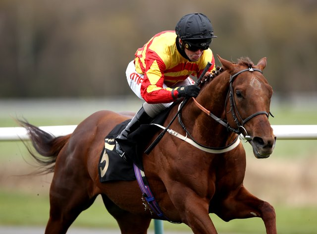 Sir Ron Priestley drops down in trip for the Betfair Exchange Jockey Club Stakes