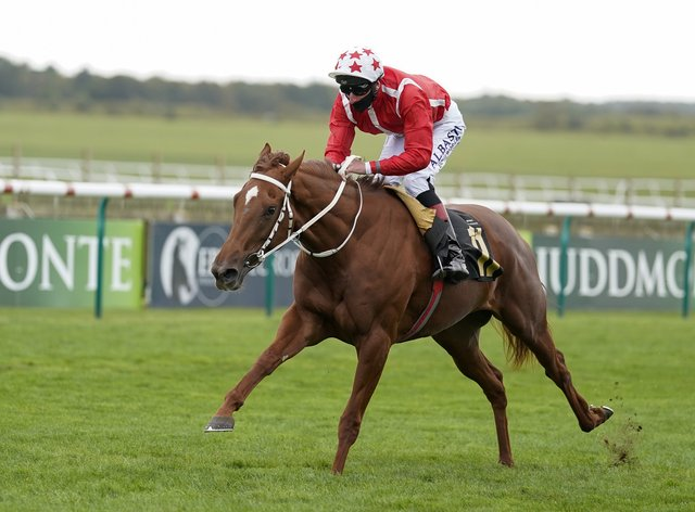 Saffron Beach is no back number in the 1000 Guineas