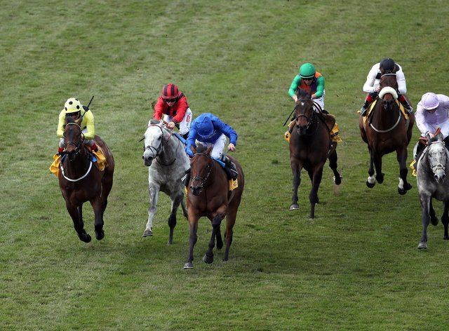 Lazuli (centre, blue) on the way to victory