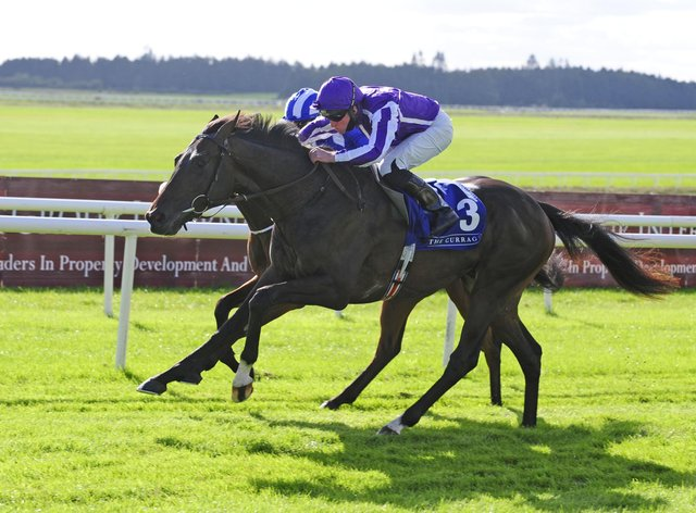 High Definition is one of five Aidan O'Brien possibles for the Novibet Derby Trial at Lingfield