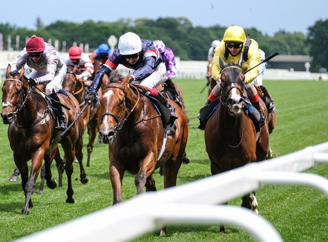 Sir Busker (white cap) has the Queen Anne Stakes at Royal Ascot as a big target