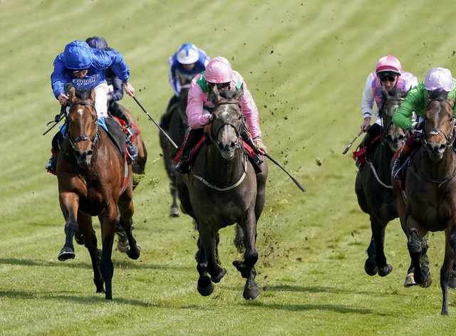 Wirko (left, blue) winning the Blue Riband Trial at Epsom