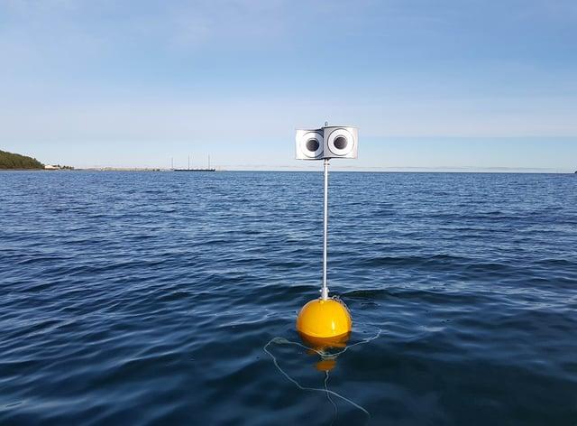 A 'looming-eyed buoy' deterrent deployed within the Küdema Bay, Estonia (Andres Kalamees/PA)