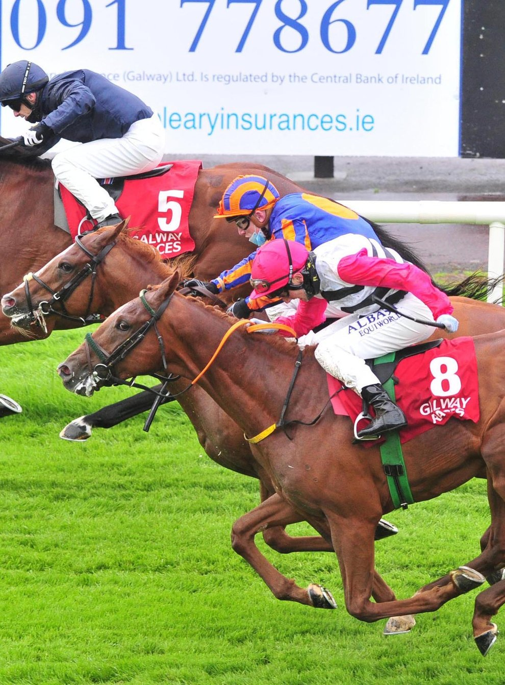 Ontario (top) winning at last year's Galway Festival