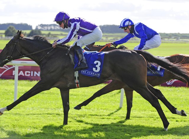 High Definition is favourite for the Derby