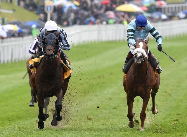 Not So Sleepy (right) is already a big-race winner at Chester