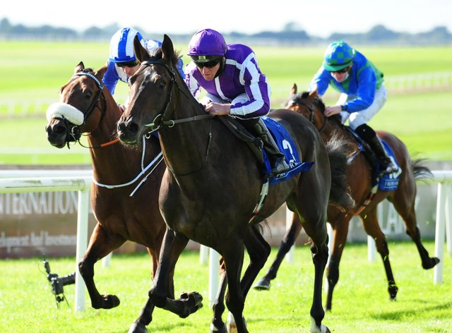 High Definition is facing a race against time to make a Derby trial