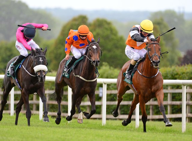 Silence Please (left) is one of two runners for Jessica Harrington in the Blue Wind Stakes