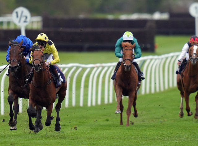Third Realm (yellow) won the Derby Trial at Lingfield