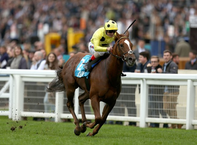 Cape Byron could be Royal Ascot-bound after a timely success at Haydock
