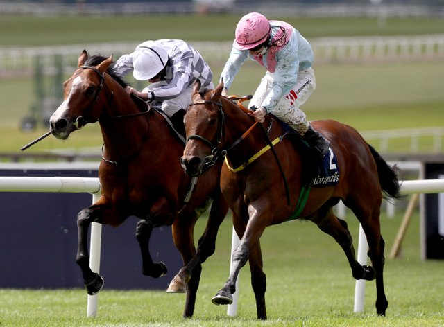 Helvic Dream (right) and Broome fight out the finish of the Tattersalls Gold Cup