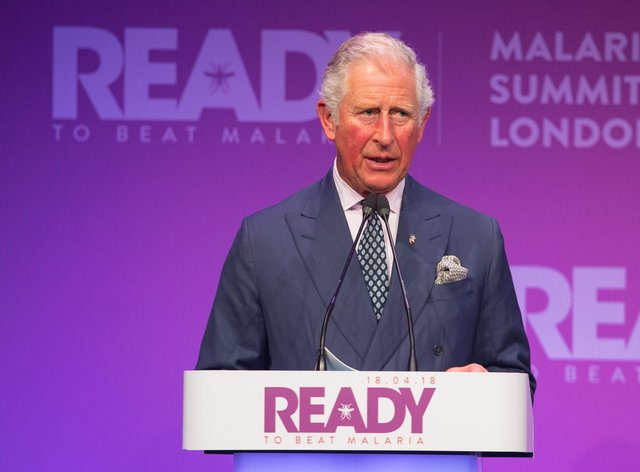 The Prince of Wales speaking at the Malaria Summit in 2018