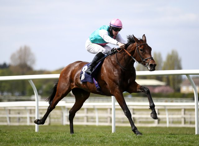 Noon Star winning at Wetherby
