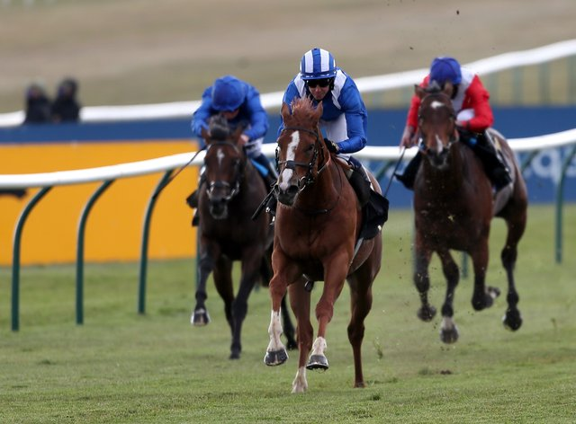 Mohaafeth was visually impressive at Newmarket