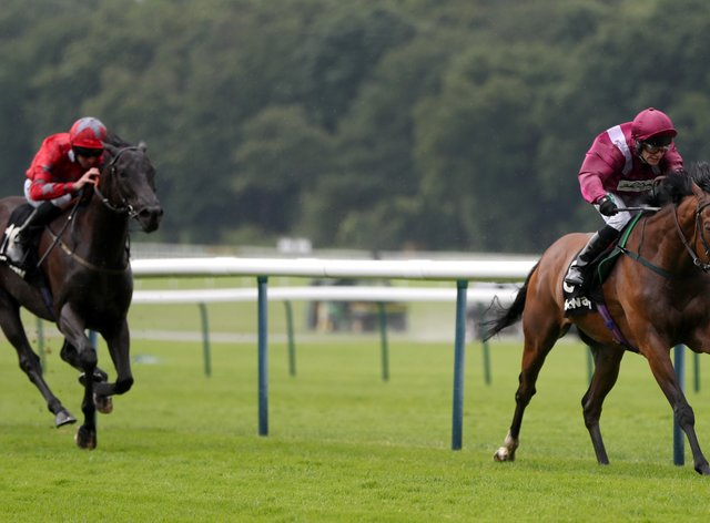 Safe Voyage bids to win the Betway John of Gaunt Stakes at Haydock for a second time