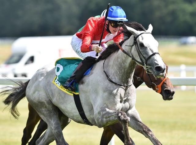 Cabaletta winning at Newbury