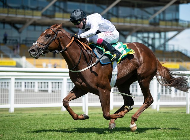 Method pleased trainer Martyn Meade and is on course for the Commonwealth Cup at Royal Ascot