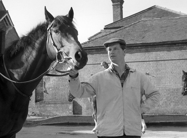 Mill Reef standing with Ian Balding in the build-up to the Derby