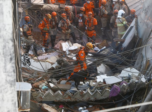 Firefighters use a sniffer dog to search for possible survivors after a building collapsed in Rio