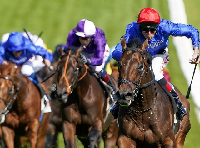 Mojo Star (purple) finished second to Adayar