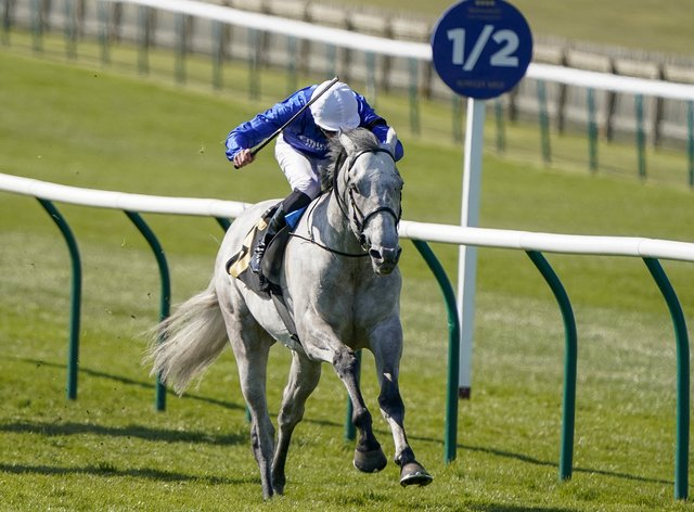 Highland Avenue is on course for the St James's Palace Stakes at Royal Ascot