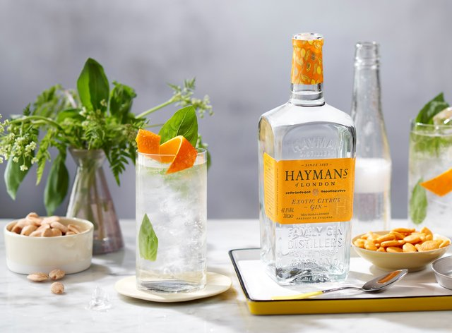 Hayman's Exotic Citrus Gin with a gin & tonic