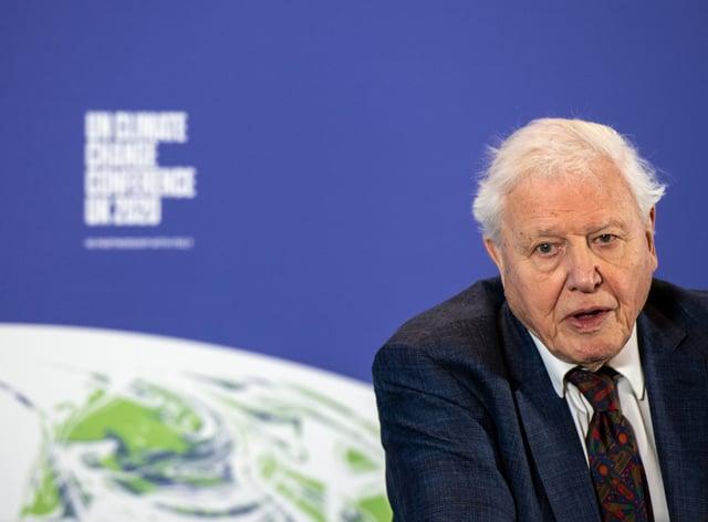 <p>Sir David Attenborough</p>