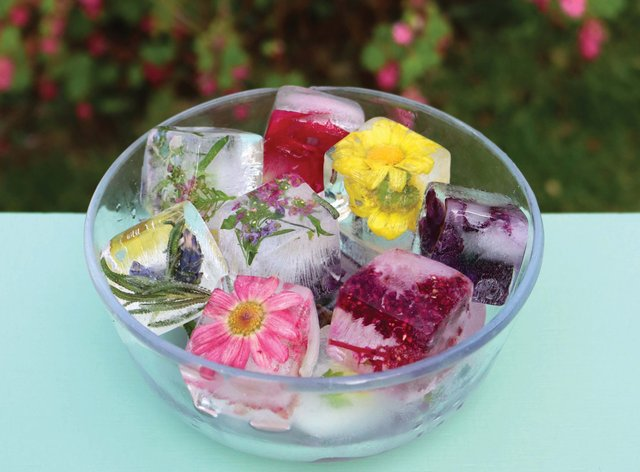 Ice cubes embedded with flowers (Tanya Anderson/PA)