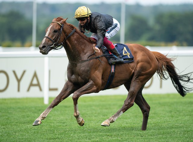 Stradivarius will bid to win a record-equalling fourth Gold Cup at Royal Ascot on Thursday
