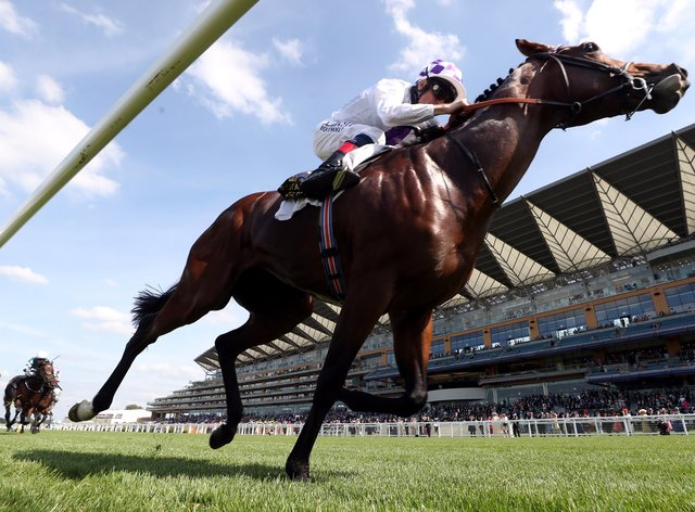 Poetic Flare was magnificent as crowds returned to Royal Ascot