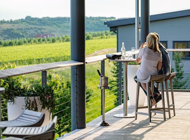 <p>Rathfinny Wine Estate (Rathfinny/PA)</p>