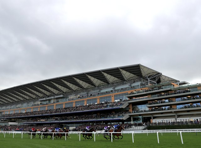Runners and riders pass the grandstand during British Champions Day