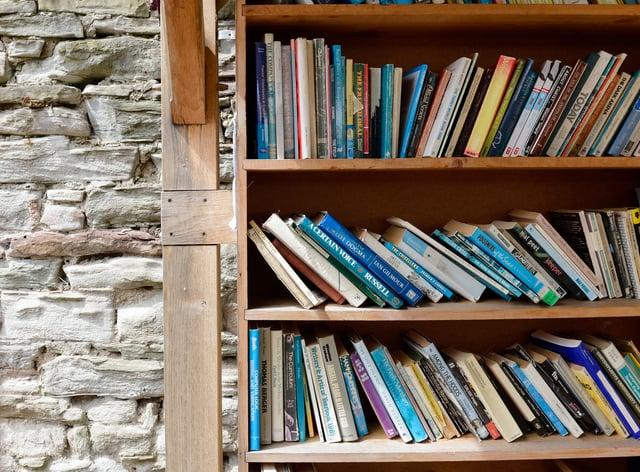 A book shelf (Ryan Phillips/PA)