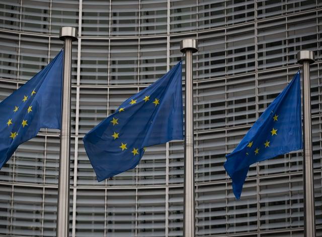 EU flags (Aaron Chown/PA)