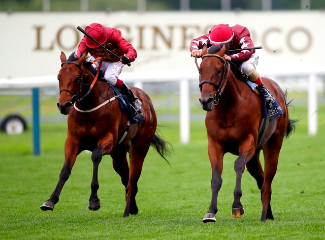 Golden Pal (right) finishing second at Royal Ascot