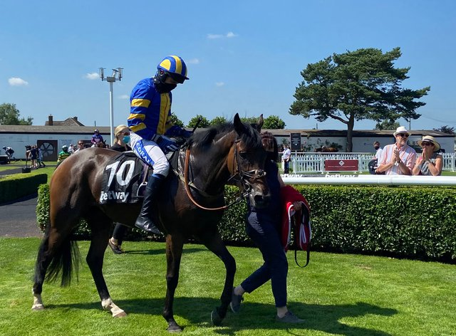 Stonific and Tom Scudamore return victorious