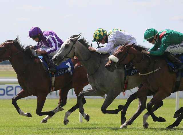Concert Hall (left) winning the opening race at the Curragh on Sunday