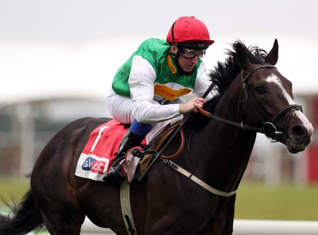Pyledriver will miss the King George