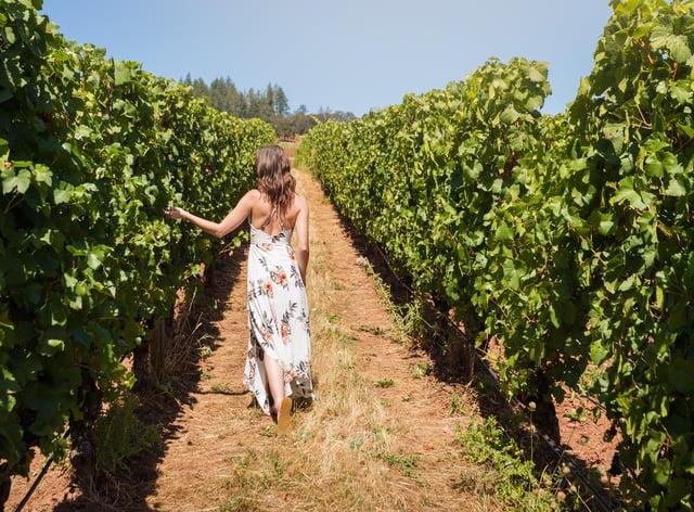 Strolling in a vineyard