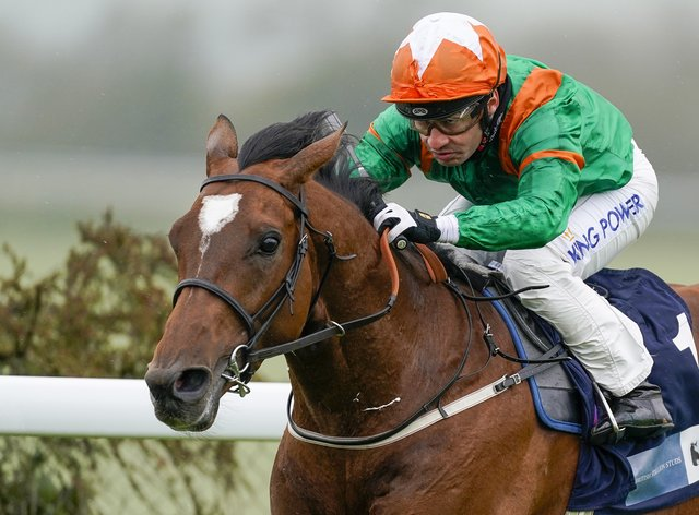 Lone Eagle heads to the King George