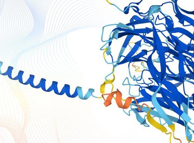 Protein structures representing the data obtained using AlphaFold (Karen Arnott/EMBL-EBI)