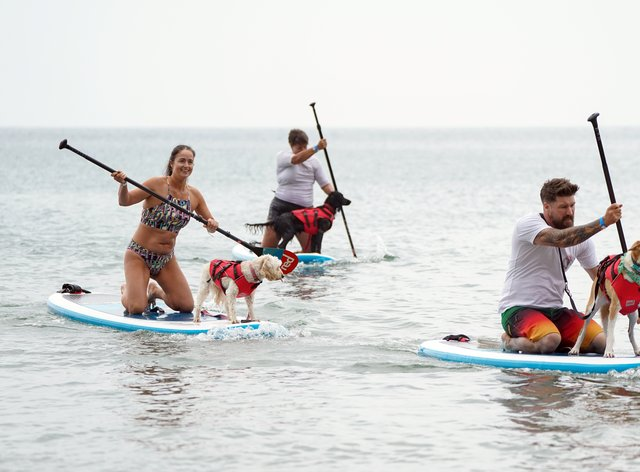 Dogs and their owners took to the sea on Sunday morning in the annual Dogmasters competition (Andrew Matthews/PA)