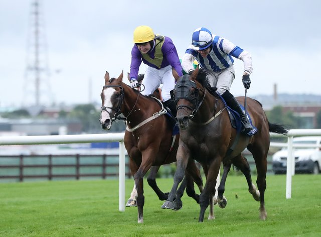 Colter and Finian Maguire (right) get up late to win (Niall Carson/PA)