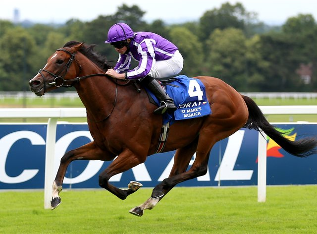 St Mark's Basilica is set to clash with Tarnawa in the Irish Champion Stakes (Nigel French/PA)