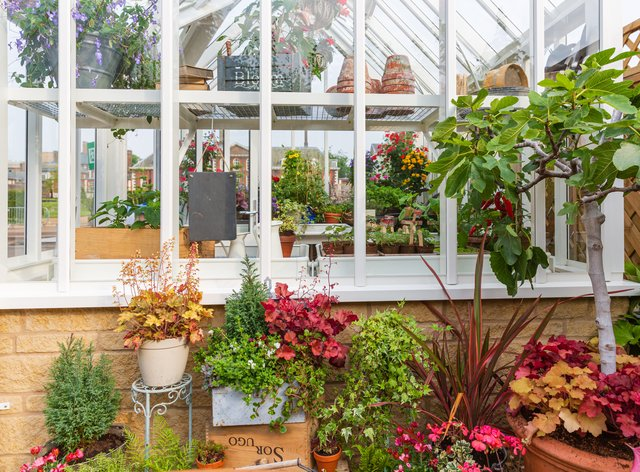 Get your greenhouse ready for winter (Griffin Glasshouses/PA)