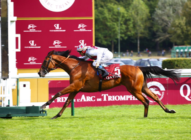 Teona shocked Snowfall in the Prix Vermeille (Scoopdyga/France Galop)
