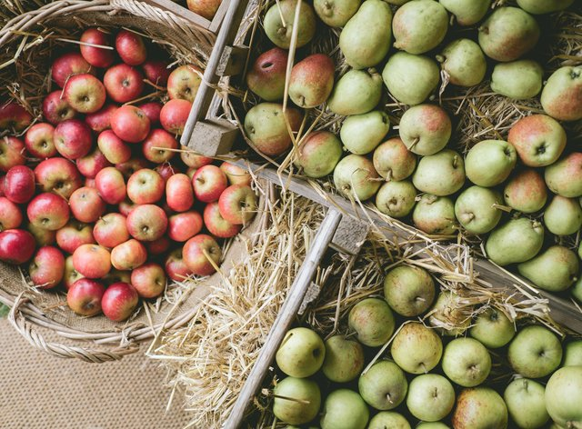 These are the top UK harvest festivals (Heligan/PA)