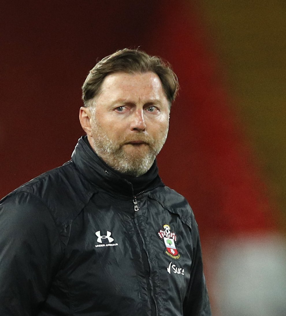 Southampton boss Ralph Hasenhuttl thinks the takeover at Newcastle will change the dynamic of the relegation battle (Phil Noble/PA)